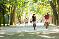Biking in the Vondelpark in Amsterdam Stock Photography