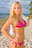 bikini ξανθή όμορφη γυναίκα Στοκ εικόνα με δικαίωμα ελεύθερης χρήσης