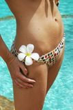 bikini Στοκ φωτογραφίες με δικαίωμα ελεύθερης χρήσης