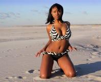 Bikini babe royalty-vrije stock fotografie