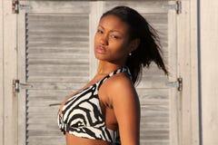 Bikini babe stock afbeeldingen