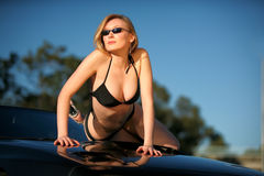 Bikini babe glamour Royalty Free Stock Images