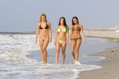 Bikini Beach. Beautiful girls on the beach all in bikinis Royalty Free Stock Photo