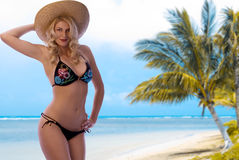 Bikini Beach. Gorgeous Blonde on a Gorgeous Tropical Beach Stock Images