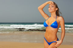 Bikini bleu Images stock