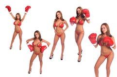 Bikini Boxers stock photography