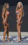 Bikini competition Stock Photos