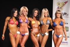 Bikini Contest Finalists Stock Images