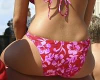 Bikini dell'ibisco Fotografie Stock Libere da Diritti