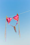 Bikini is drying on a line Royalty Free Stock Photo