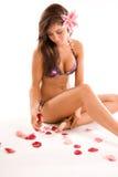 bikini dziewczyna Obraz Royalty Free