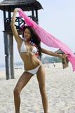 bikini dziewczyna Obraz Stock