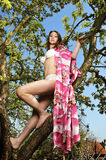 Bikini girl and tree Royalty Free Stock Images