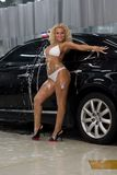 Bikini girl washing cars Stock Images