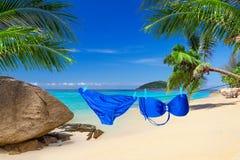 Bikini hanging at the tropical beach Stock Image