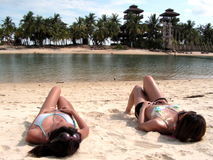 Bikini ladies sunbathing Royalty Free Stock Photography