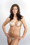 Bikini Model Stock Photo