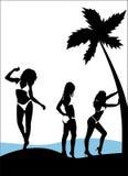 Bikini model  Royalty Free Stock Photos