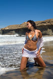 Bikini model Royalty Free Stock Photo