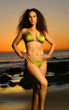 Bikini Model Royalty Free Stock Image