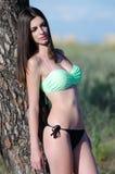 Bikini model against a tree Stock Photos