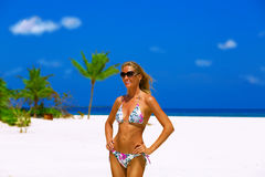 Bikini model on the beach Royalty Free Stock Image