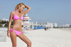 Bikini model posing on the beach Royalty Free Stock Image
