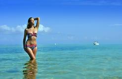 Bikini model posing in front of camera at tropical beach stock image