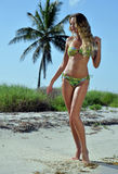 Bikini model posing sexy in front of palm tree Stock Images