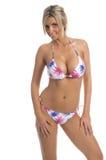 Bikini patriottico della palma Immagine Stock Libera da Diritti