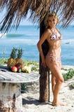 Bikini-Strand blond Lizenzfreie Stockfotografie