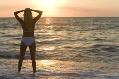 Bikini Sunset Stock Photography