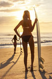 Bikini Surfer γυναικών & παραλία ηλιοβασιλέματος ιστιοσανίδων Στοκ φωτογραφία με δικαίωμα ελεύθερης χρήσης