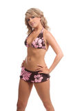 bikini swimbay Στοκ Εικόνες