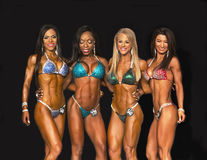 Bikini Winners Line Up Royalty Free Stock Photo