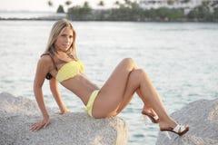 bikini wizerunku wzorcowy target92_0_ Obrazy Stock
