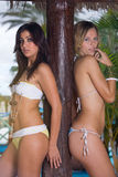 Bikini woman Stock Photography