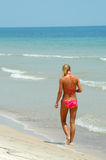 Bikini woman in surf. Beautiful young blond woman wearing a pink bikini, walking on a beach away from the viewer, at the edge of the ocean surf Stock Image