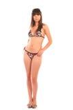 bikinibrunett Arkivbild