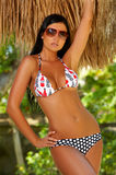 bikiniflicka Royaltyfria Bilder