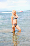 Bikinimädchen im Wasser. Lizenzfreie Stockfotos