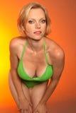 bikinimodell arkivfoton