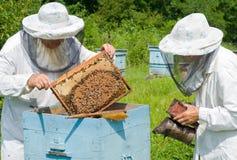 bikupa för 2 beekeepers Royaltyfri Foto