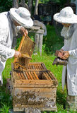 bikupa för 6 beekeepers Fotografering för Bildbyråer