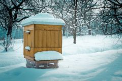 Bikupa i vinter Arkivfoto