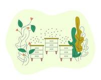 Bikupor på lantgårdfältet med blommor Bikupa med bibikupor och en svärm av bin Att blomma blommar med bin Plant modernt f?r vekto royaltyfri illustrationer