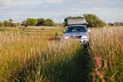 bil 4x4 i en äng med högt gräs Arkivbilder