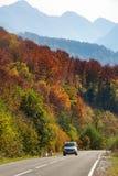 Bil i skogen på den Transfagarasan vägen arkivfoton