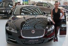 Bil Jaguar XJ Fotografering för Bildbyråer