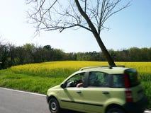 Bil med biodiesel för jordbruksprodukter för rapsfröfält en van vid arkivbild